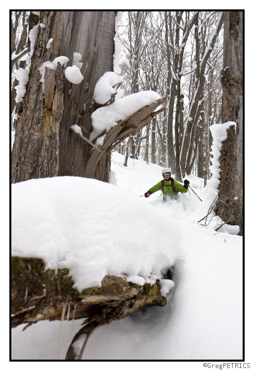 stumps under the snow in the Vermont Backcountry Ski Terrain